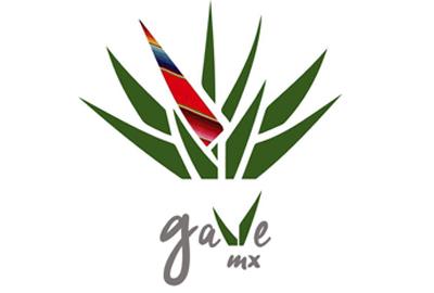 GAVEMX